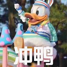 """""""冲鸭""""是什么意思?"""