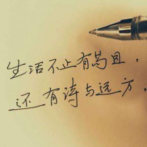 """""""生活不止眼前的苟且,还有诗和远方""""是什么意思?"""