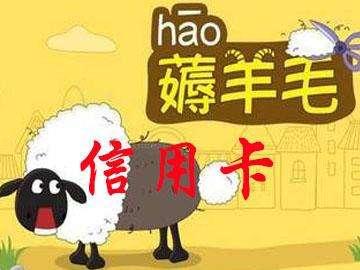 """""""羊毛党""""和""""薅羊毛""""是什么意思?"""