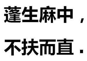 """""""蓬生麻中,不扶自直""""是什么意思?"""