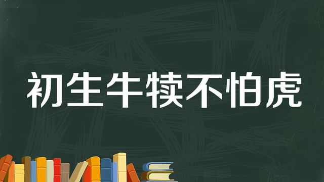 """""""初生牛犊不怕虎""""是什么意思?"""