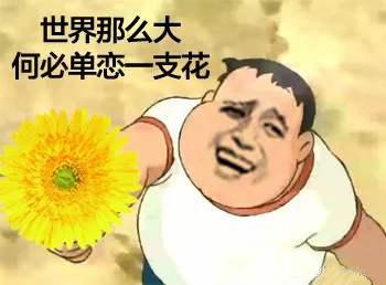 """""""人生何处无芳草,何必单恋一枝花""""是什么意思?"""