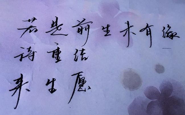 """""""若是前生未有缘,待重结、来生愿""""是什么意思?"""
