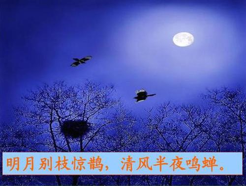 """""""明月别枝惊鹊,清风半夜鸣蝉""""是什么意思?"""