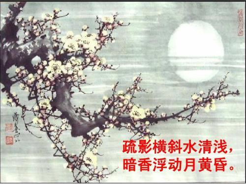 """""""疏影横斜水清浅,暗香浮动月黄昏""""是什么意思?"""