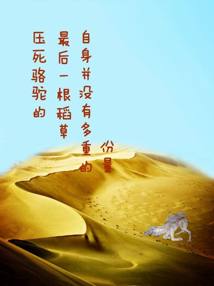 """""""压死骆驼的最后一根稻草""""是什么意思?"""