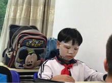 """""""精致小学生""""是什么意思?"""