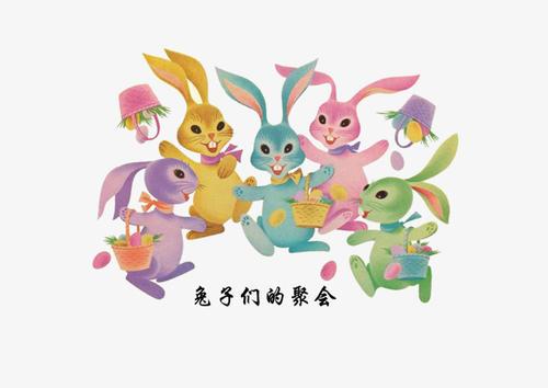 """""""筒子们""""和""""兔子们""""是什么意思?"""