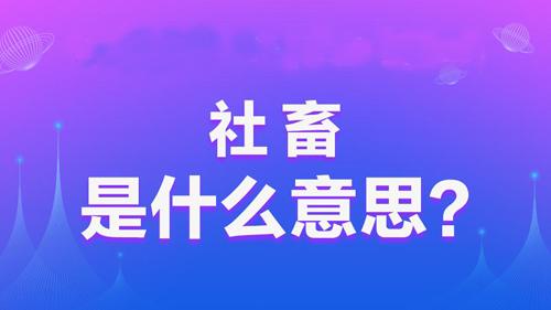 """【网络用语】""""社畜""""是什么意思?"""