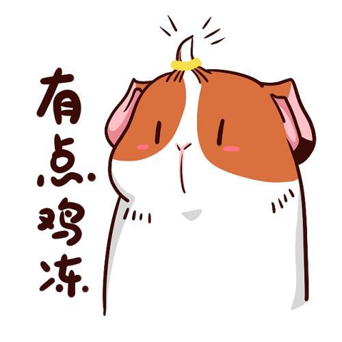 """【网络用语】""""鸡冻""""是什么意思?"""