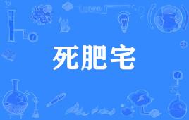 """【网络用语】""""死肥宅""""是什么意思?"""