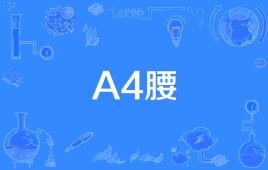 """A4腰""是什么意思?"