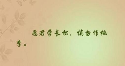 """""""愿君学长松,慎勿作桃李""""是什么意思?"""