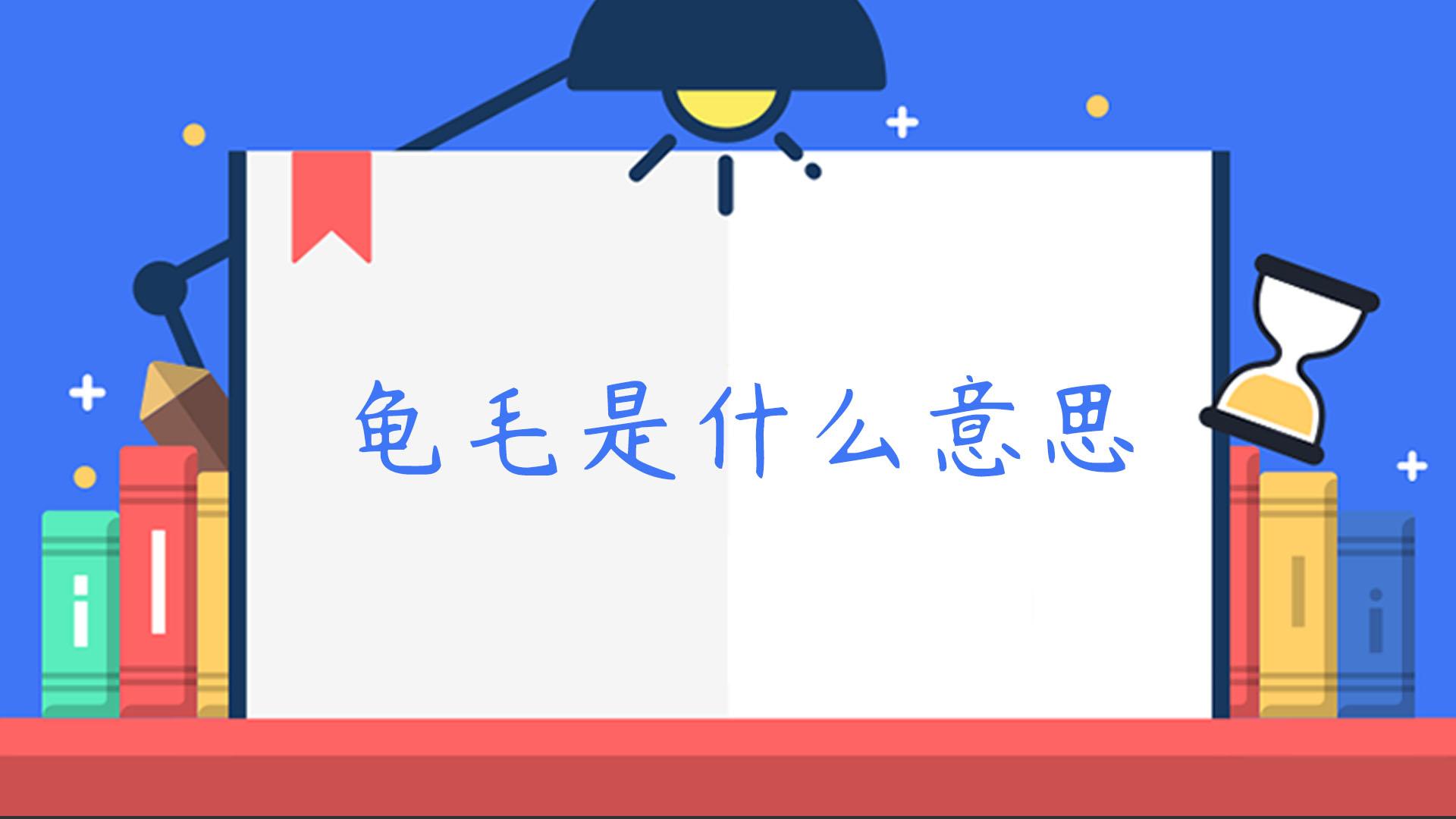 """【台湾流行语】""""龟毛""""是什么意思?"""