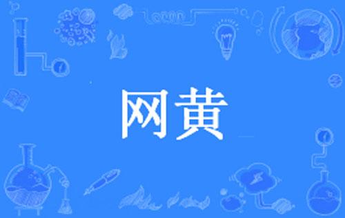 """【网络流行语】""""网黄""""是什么意思?"""