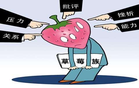"""【网络用语】""""榴莲族""""和""""草莓族""""是什么意思?"""