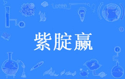 """【网络用语】""""紫腚赢""""是什么意思?"""