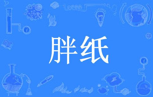 """【网络用语】""""胖纸""""是什么意思?"""