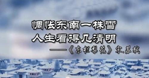 """""""惆怅东栏一株雪,人生看得几清明""""是什么意思?"""
