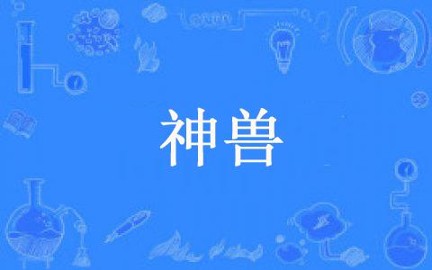 """【网络用语】""""神兽""""是什么意思?"""