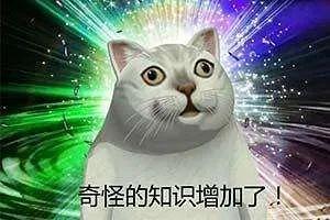 """【网络用语】""""奇怪的知识增加了""""是什么意思?"""