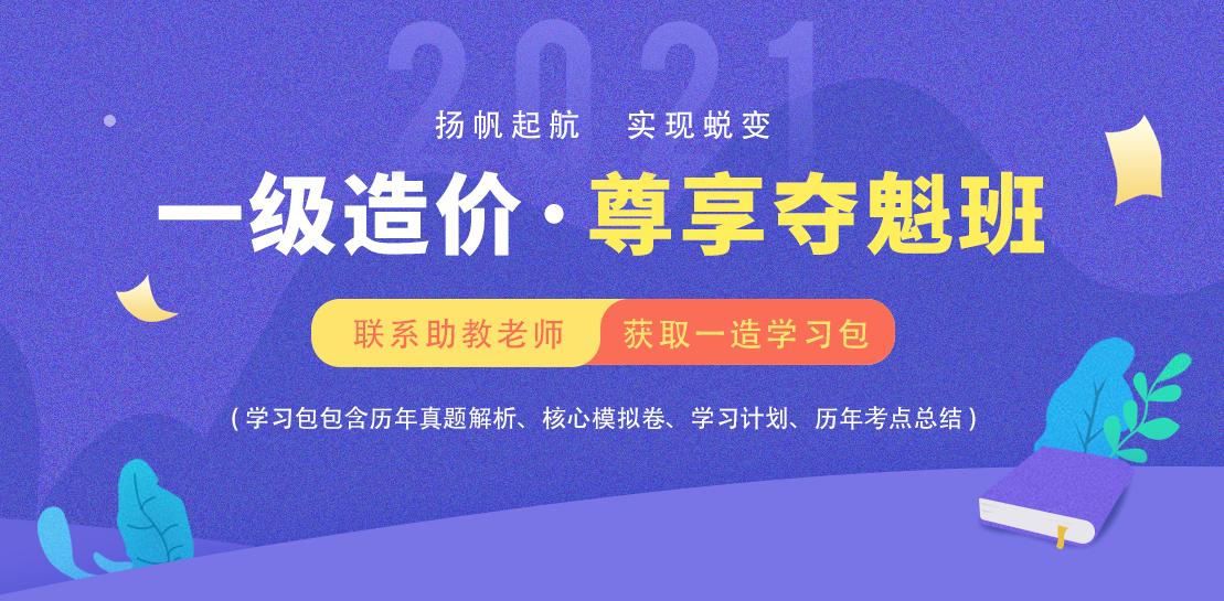 """021年一级造价师王宏伟全套视频课程交通案例讲义"""""""